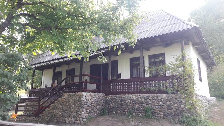 Traditional House in Maramures, Tara Lapusului
