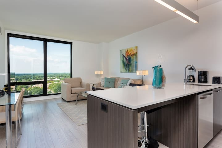 WoW!! Relaxing 1BR in the heart of Reston!