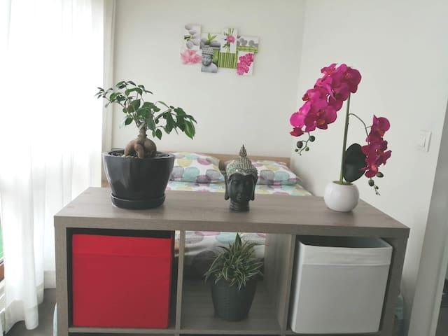 studio zen dans résidence calme
