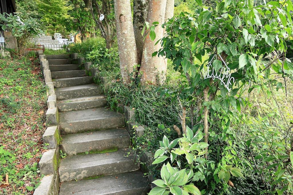 この道から庭へ。