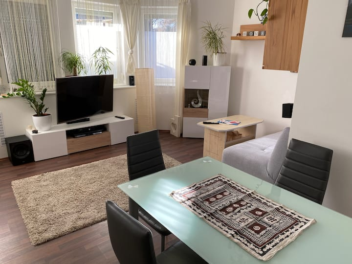 Cosy apartment in perfect location f. visit Vienna
