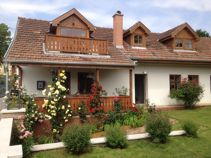 Beautiful countryside house near the river Danube!