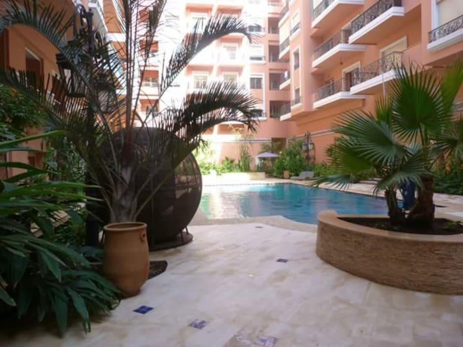 Piscine 100 m²