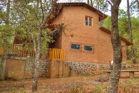 Cabaña Encino...en medio del bosque