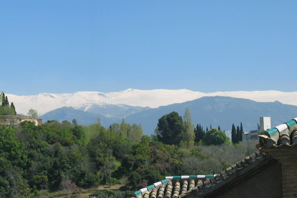 Views of the mountains from the torreon terrace