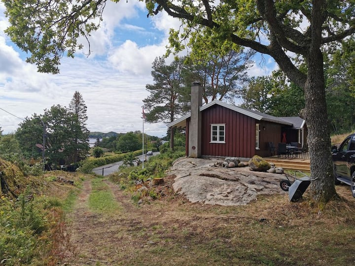 Nydelig hytte med alle fasiliteter nær Viksfjord
