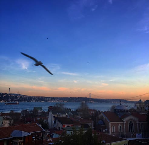 GREAT VIEW OF BOSPHORUS AT MODERN PLACE AND AREA!