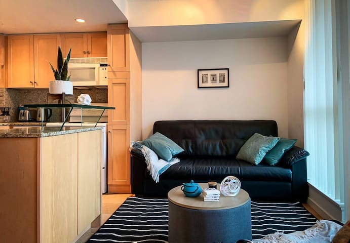 Cozy 1 Bedroom walking distance to Union station