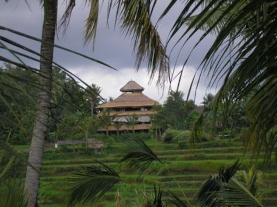Back View of Villa from Across the Rice Fields