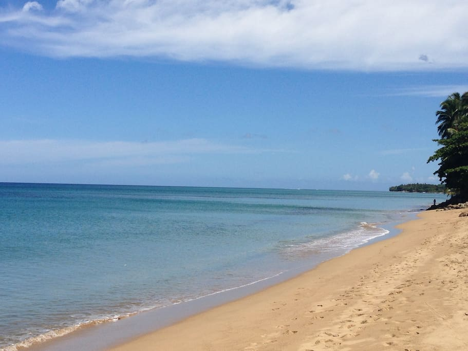 Sea Beach,excellent beach community with an amazing calm swimming beach, steps from Concha Azul, located near beach restaurants and beach bars, walk to town.