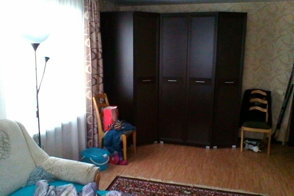 Гостинная с диваном кроватью и мебелью для одежды.