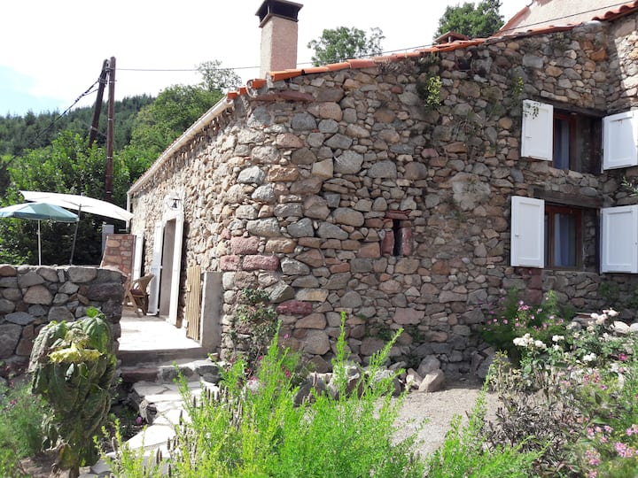 Vallespir : maison avec vue 1000 m d'altitude