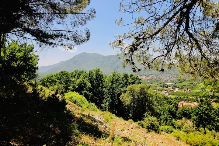 Rifugio al Castagneto