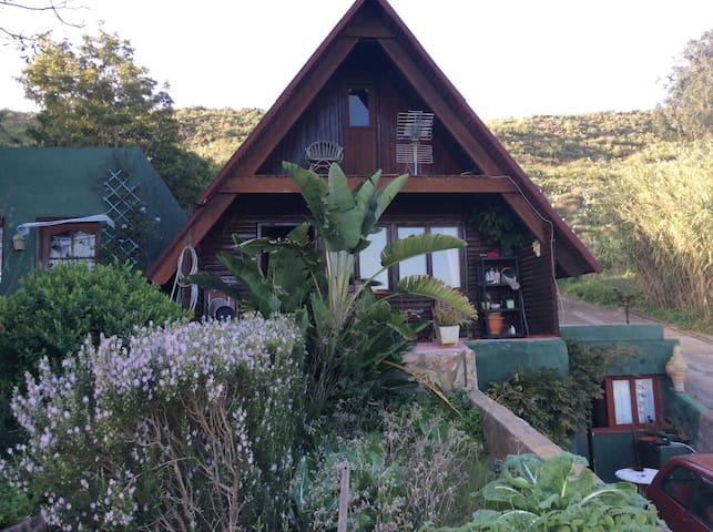 Acogedora cabaña en La Laguna - San Cristóbal de La Laguna - House