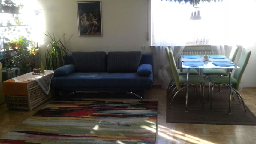 cosy und big flat near Munich with balcony - Freising - Apartamento