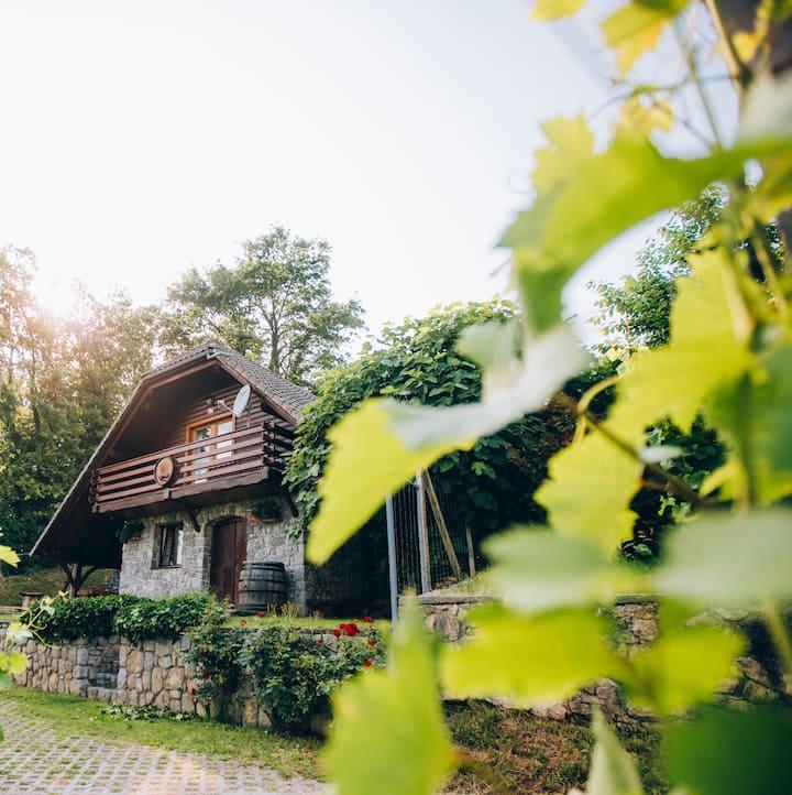 Vineyard cottage Rataj