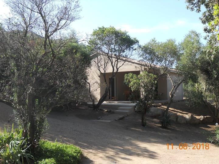 Hébergement FALCIA -  FIGARI . villa 2 chambres
