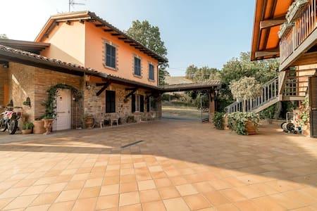 Villa Rossana Apartment Relax Langhirano - Parma - Langhirano