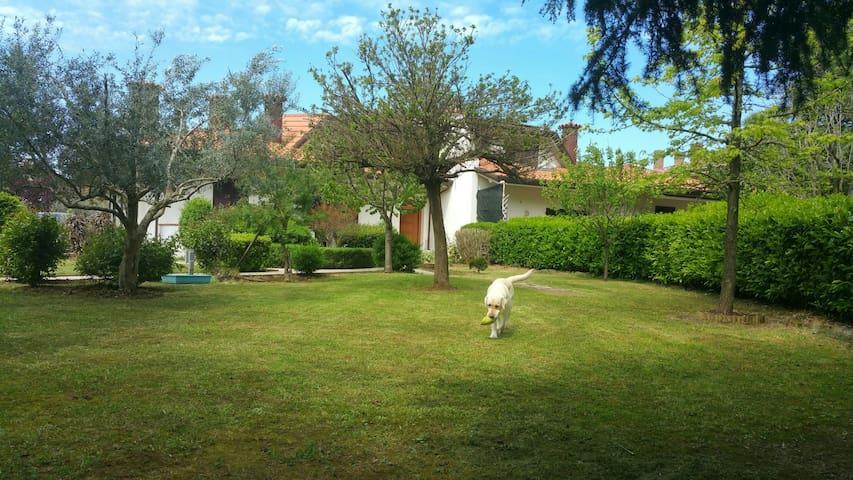 Villa SantaMonica MisanoWCircuit - Santa Monica-Cella - Villa
