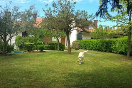 Villa SantaMonica MisanoWCircuit - Santa Monica-Cella