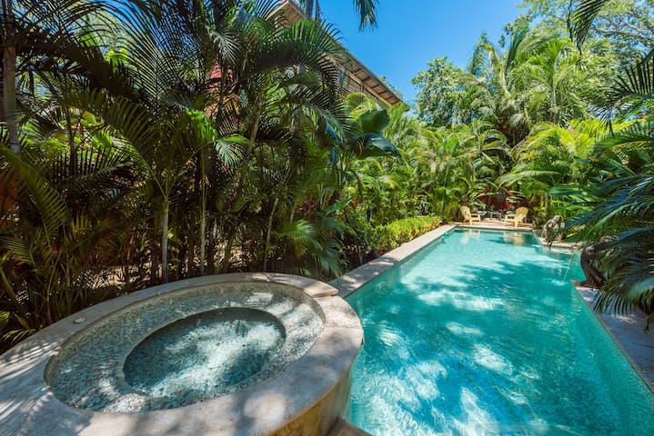 Lush Jungle Paradise 150 Meters from Beach