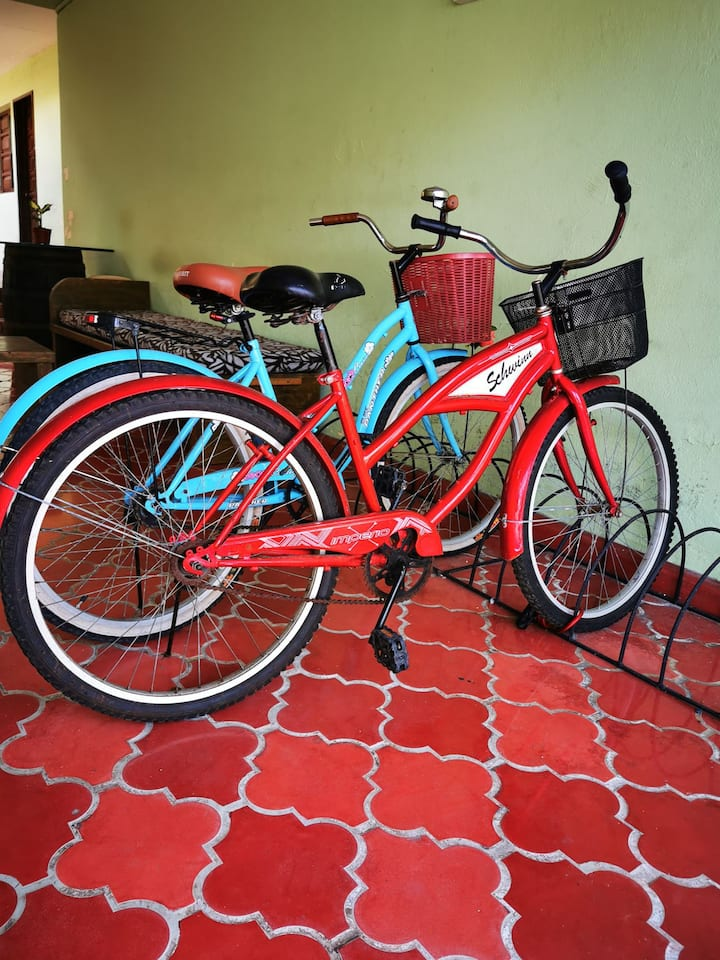 Downtown 2x1 Bikes, Snorke,wifi Including