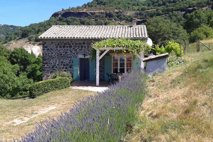 Beautiful Holiday Home in Saint-Pons near Forest