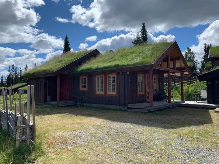 Moderne og sentralt beliggende på Skeikampen