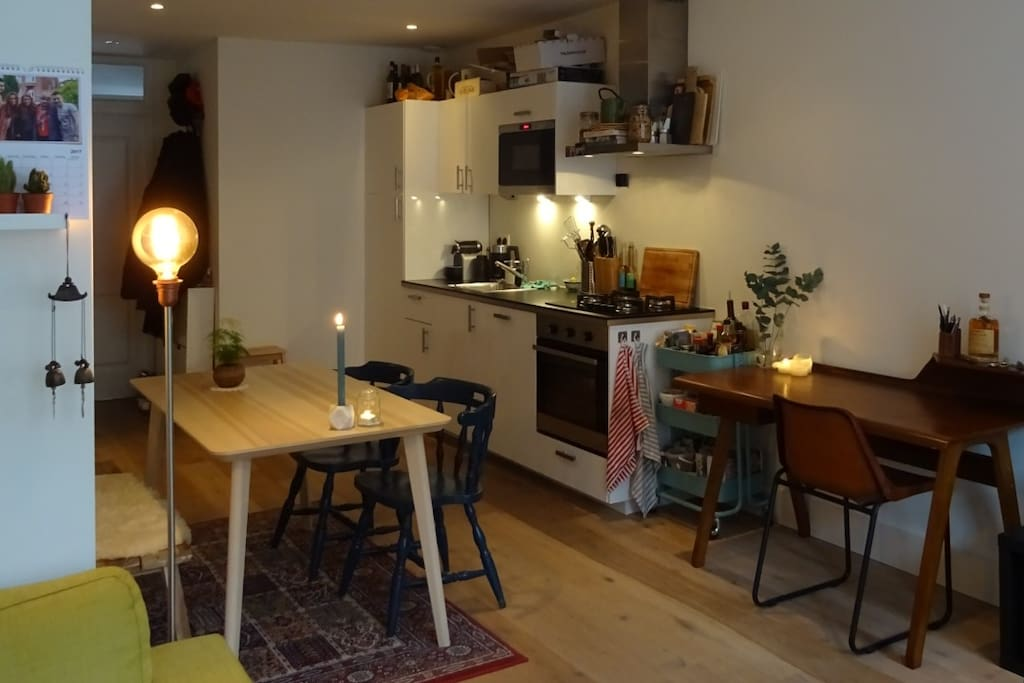 Cozy apartment next to Vondelpark