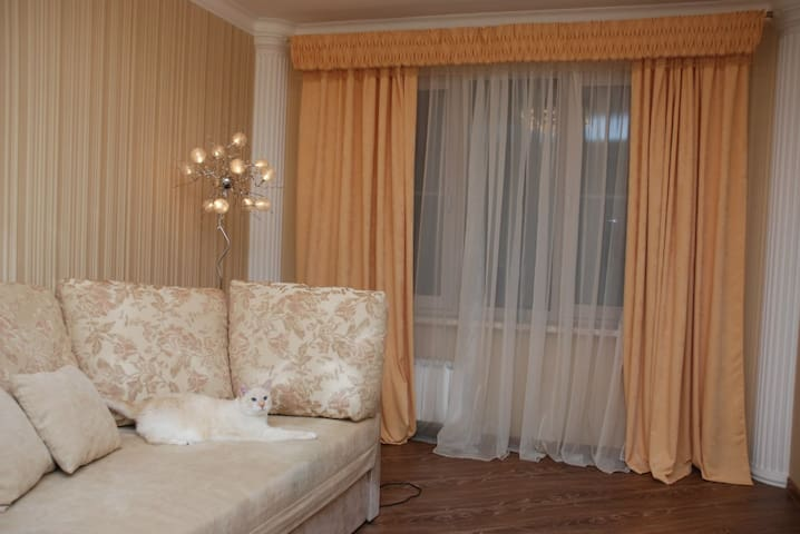 Irina and Nikolay apartments