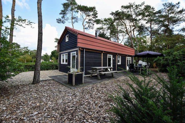 Moderne villa aan de rand van de Veluwe op vakantiepark in bosrijke omgeving