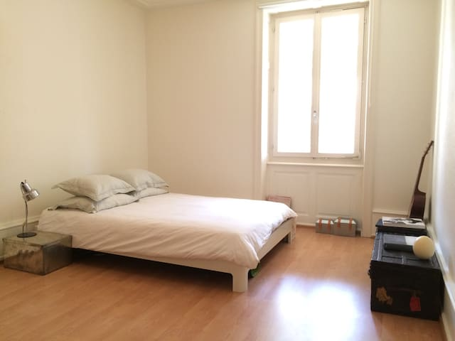 Bright and Cosy Apartment in Kleinbasel - Basel - Daire