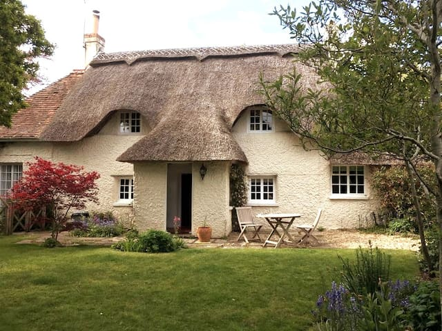 Keepings Cottage - 350 yr old New Forest Cottage