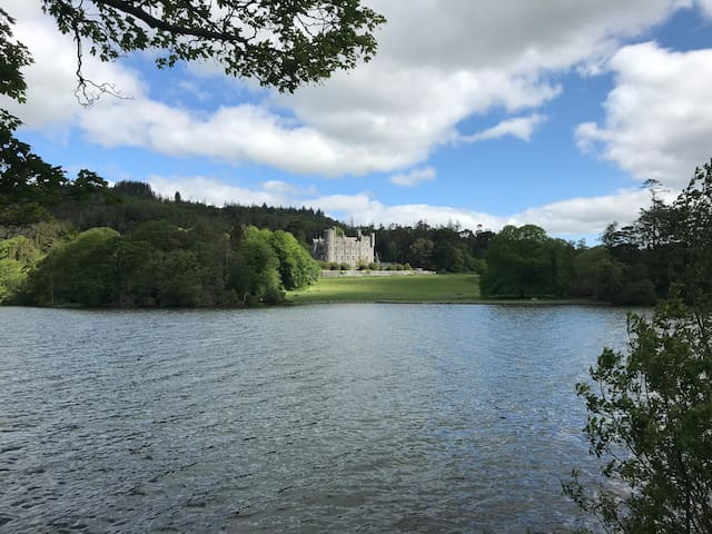 Forest View Room Castlewellan