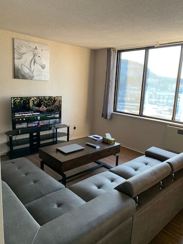 Large  private 1 Bedroom apartment  renovated.