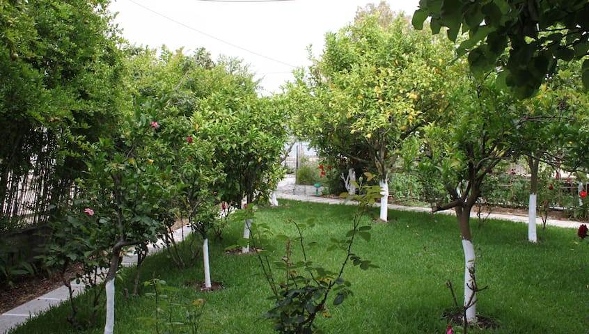 Garden View Studio next to sea - Lefkada - Apartemen
