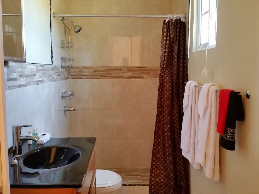 New bathroom with standing shower