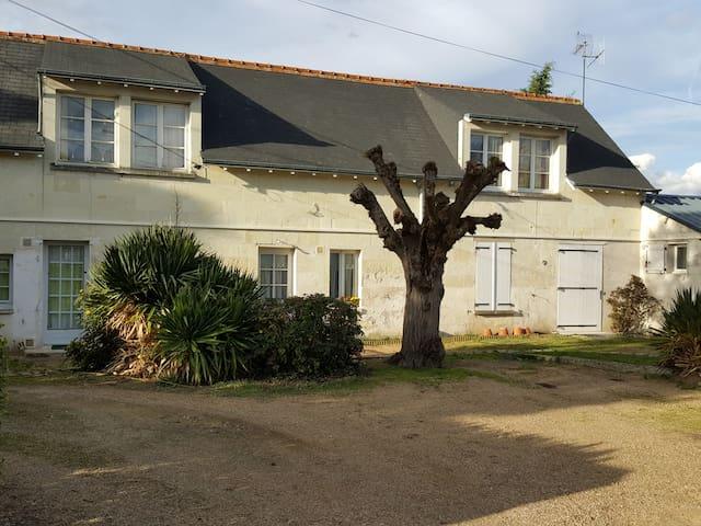Gite FLORA , pour professionels et vacanciers - Chouzé-sur-Loire - Appartement