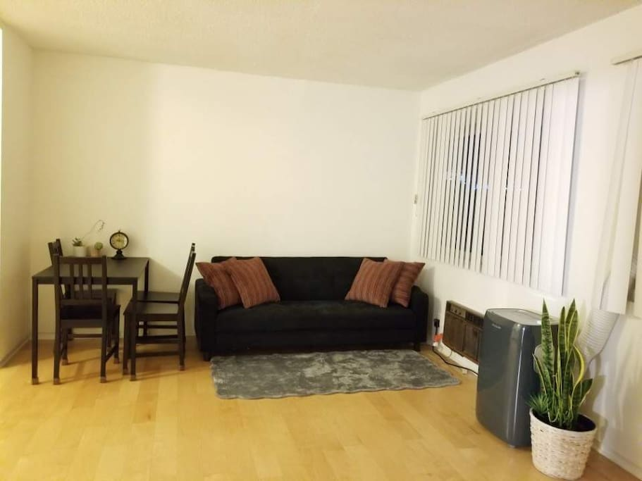 Spacious Living Room with Couch, Dining Table, and A/C & Heater.