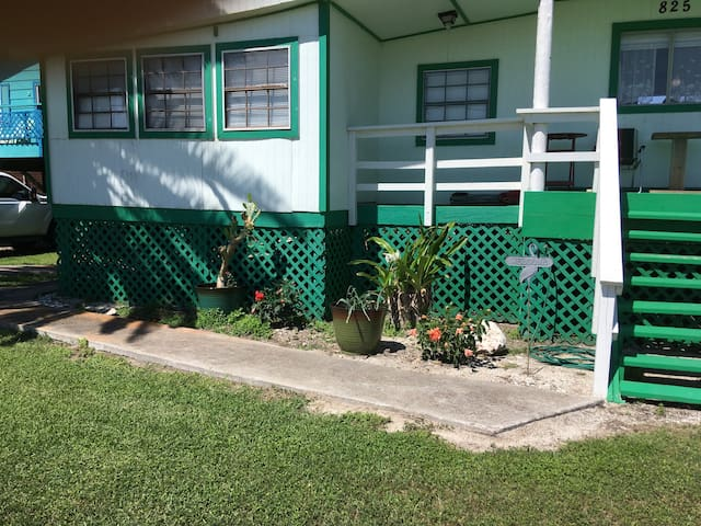 """Lovely, tropical plants add beauty to the """"Old Shell Shop Beach House."""""""