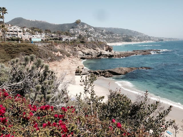 1 BR OCEANVIEW-MONTAGE  MARINE RESERVE AREA 4+ - Laguna Beach - Daire