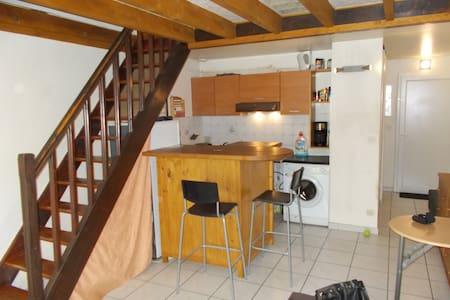appartement t1 38 m2 + place parking + jardin - Floirac - Pis