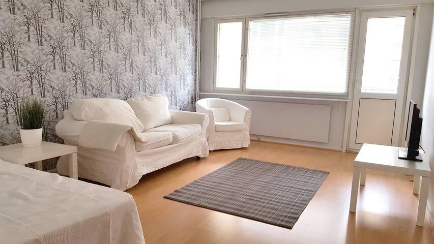 One bedroom apartment in Vaasa, Pitkäkatu 44