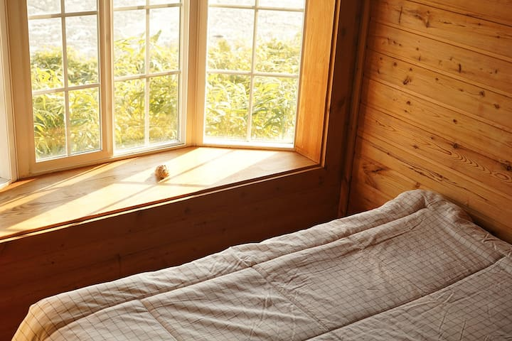 A cozy wooden room B by seaside, mudflat