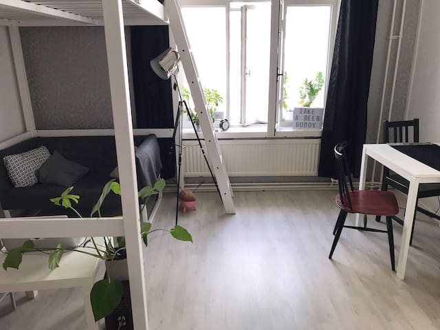 Bright studio in Alppiharju