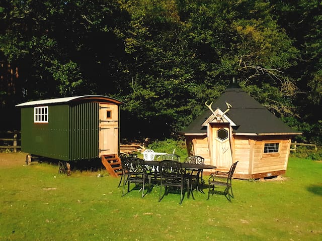 Cute and cosy Shepherds hut set in private woods.