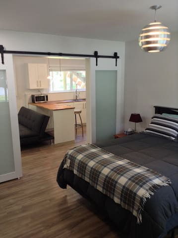 Bedroom with Queen size bed and walk in closet