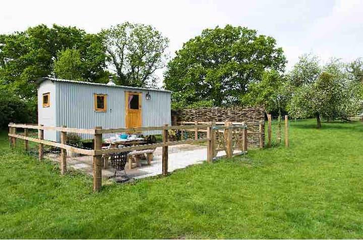 Shepherds Hut & BBQ Hut-Blaisdon-glamping sleeps 4