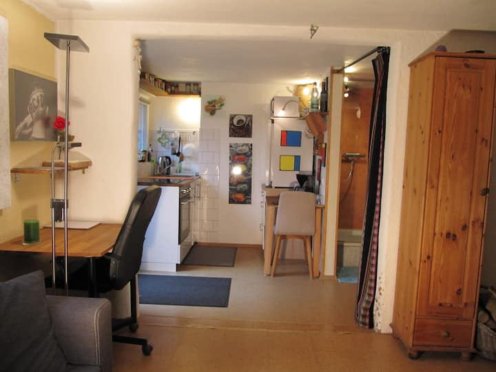 One room basement appartment. Fully furnished