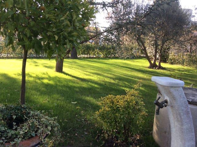 La Veranda sul Giardino - Corinaldo - Appartement